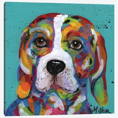 Barney Beagle Canvas Print #TCY16} by Tracy Miller Canvas Art