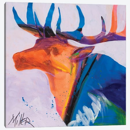 Moody Elk Canvas Print #TCY178} by Tracy Miller Canvas Art Print