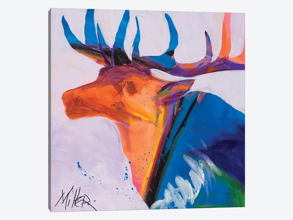 Moody Elk by Tracy Miller 1-piece Canvas Print