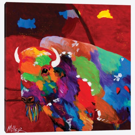 Bison and Red Sky Canvas Print #TCY17} by Tracy Miller Canvas Wall Art