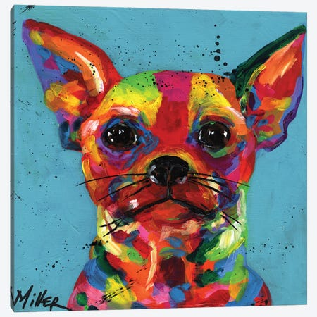 Aye Chihuahua Canvas Print #TCY1} by Tracy Miller Canvas Artwork