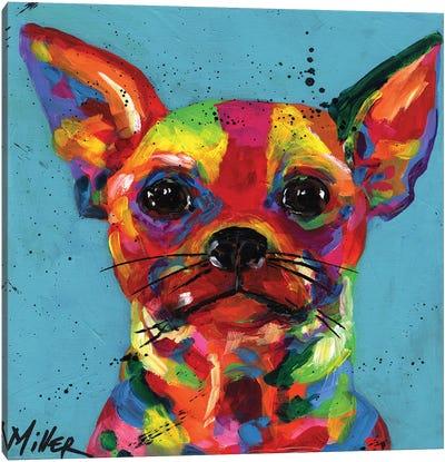 Aye Chihuahua Canvas Art Print