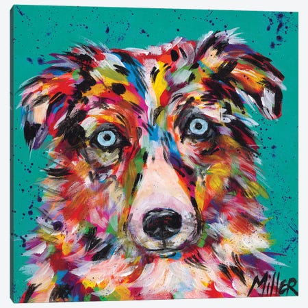 Aussie Stare Canvas Print #TCY25} by Tracy Miller Canvas Print
