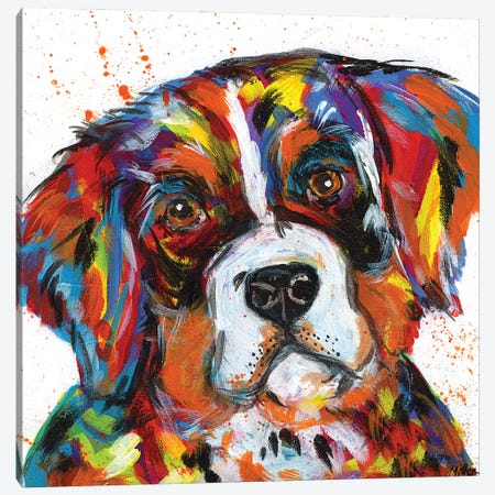 Bernese Mountain Dog Canvas Print #TCY28} by Tracy Miller Canvas Wall Art