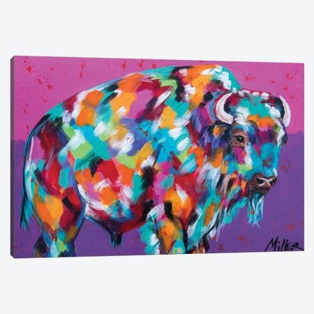Bison Majesty Canvas Print #TCY33} by Tracy Miller Canvas Print