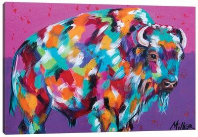 Bison Majesty Canvas Art Print