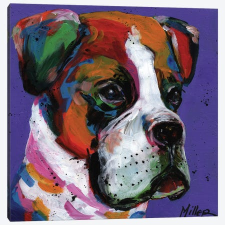 Boo Boxer Canvas Print #TCY34} by Tracy Miller Canvas Art
