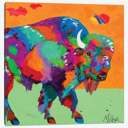 Buffalo Glow Canvas Print #TCY37} by Tracy Miller Canvas Wall Art