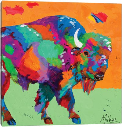 Buffalo Glow Canvas Art Print