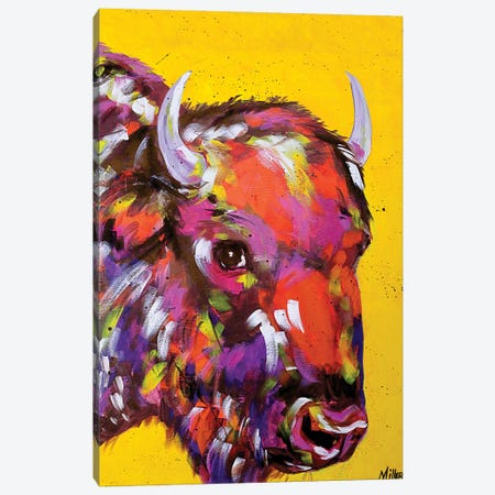 Bison in Yellow Canvas Print #TCY3} by Tracy Miller Canvas Artwork