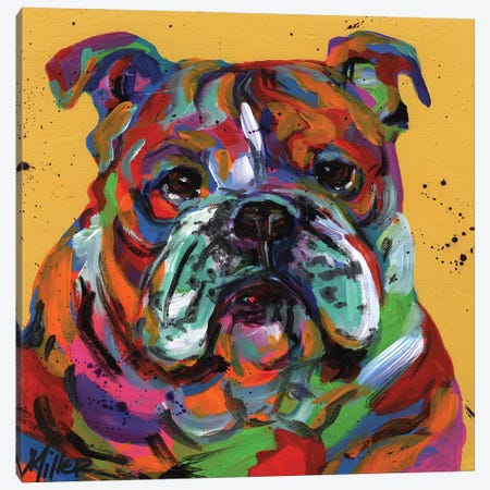 Bulldog Ben Canvas Print #TCY40} by Tracy Miller Canvas Wall Art