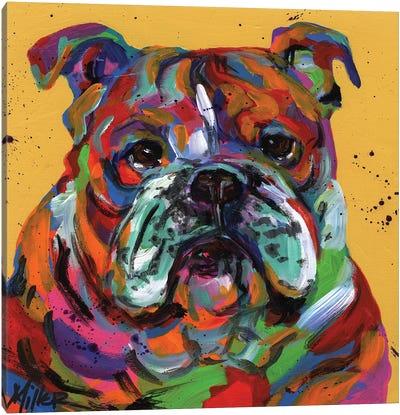 Bulldog Ben Canvas Art Print