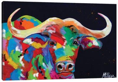 Cape Buffalo Canvas Art Print