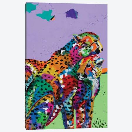 Cheetah Love Canvas Print #TCY4} by Tracy Miller Art Print