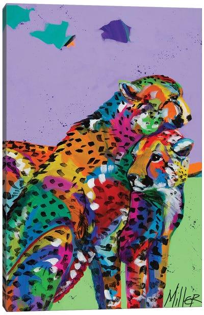 Cheetah Love Canvas Art Print