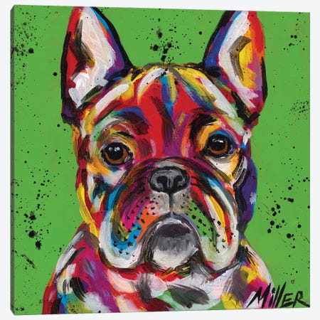 Frenchie Canvas Print #TCY57} by Tracy Miller Canvas Artwork