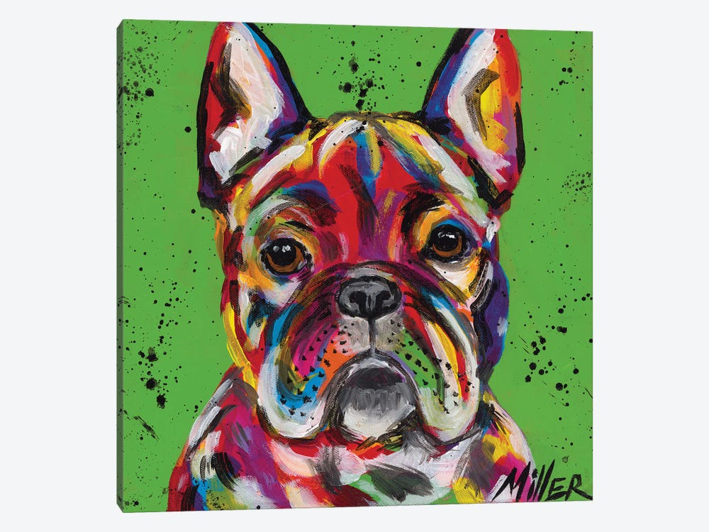 Frenchie by Tracy Miller 1-piece Canvas Print
