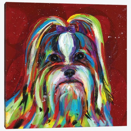 Llasa Apso Canvas Print #TCY75} by Tracy Miller Canvas Wall Art