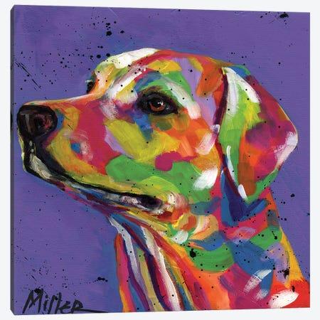 Lulu Lab Canvas Print #TCY79} by Tracy Miller Canvas Art Print