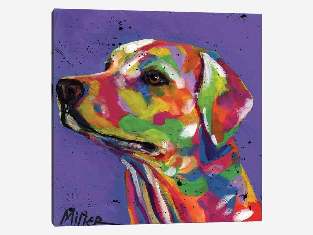 Lulu Lab by Tracy Miller 1-piece Art Print