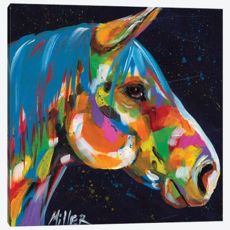 Peruvian Profile Canvas Print #TCY89} by Tracy Miller Canvas Artwork