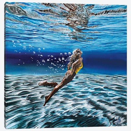 Acqua LI Canvas Print #TDC14} by Paolo Terdich Art Print