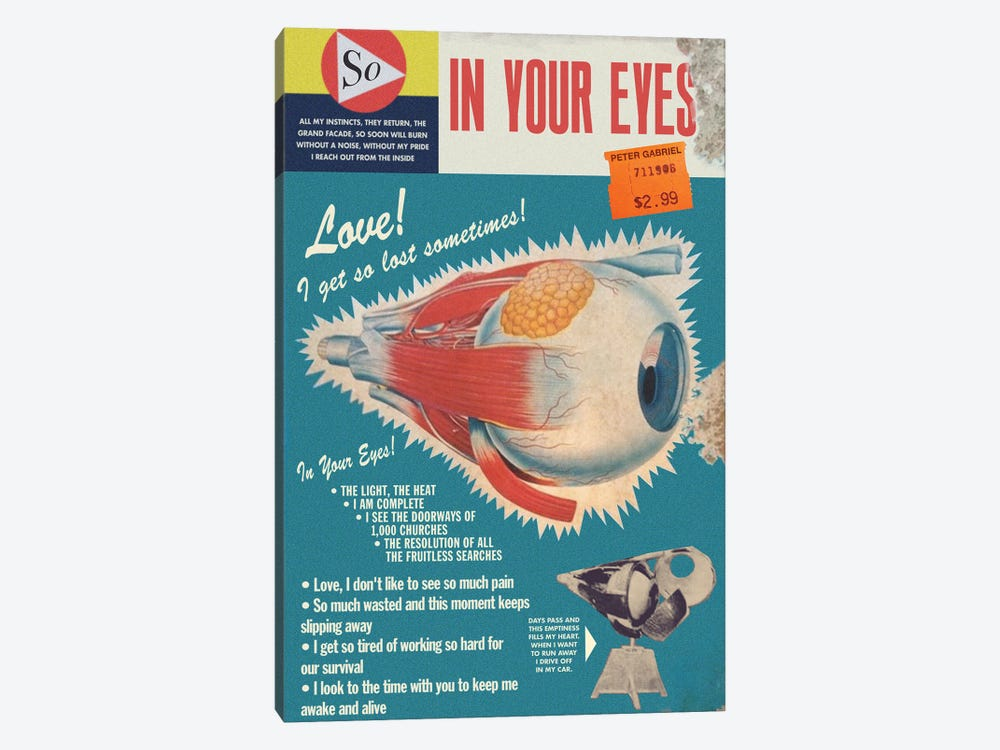 In Your Eyes by Todd Alcott 1-piece Canvas Artwork