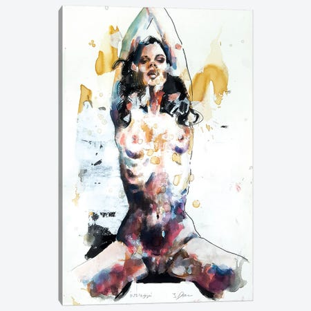 Figure 11-23-18 Canvas Print #TDO11} by Thomas Donaldson Canvas Artwork