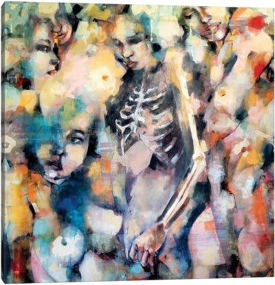 Impermanence 3-6-19 Canvas Art Print