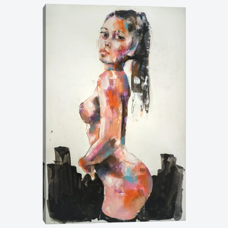 Figure 9-5-20 Canvas Print #TDO66} by Thomas Donaldson Canvas Artwork