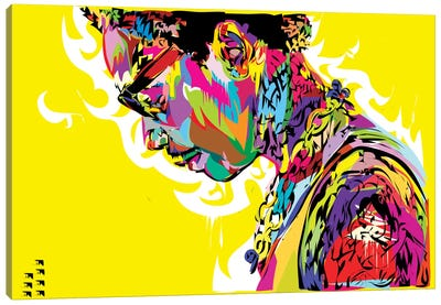 Wiz Canvas Art Print