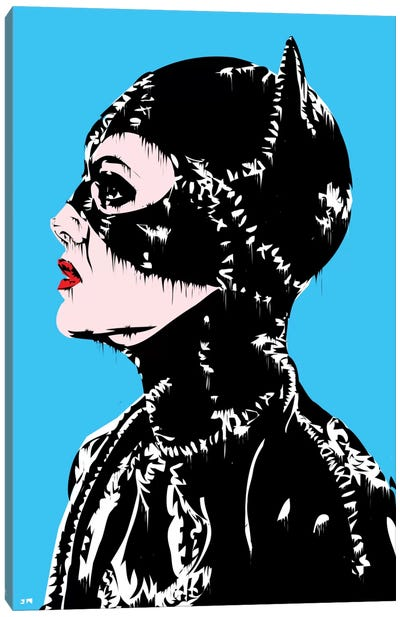 Catwoman Canvas Print #TDR22