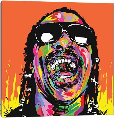 Stevie Canvas Art Print