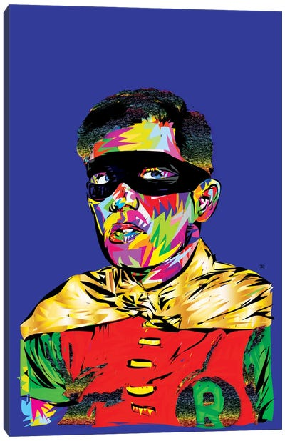 Robin Canvas Print #TDR55