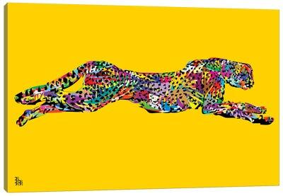 Cheetah Canvas Print #TDR90