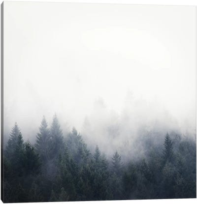 I Don't Give A Fog Canvas Art Print