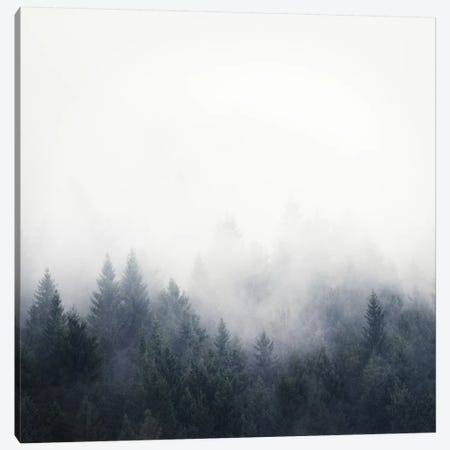I Don't Give A Fog Canvas Print #TDS11} by Tordis Kayma Canvas Art