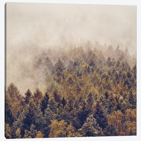 If You Had Stayed Canvas Print #TDS12} by Tordis Kayma Canvas Artwork