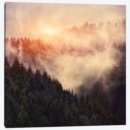 In My Other World Canvas Print #TDS13} by Tordis Kayma Canvas Artwork