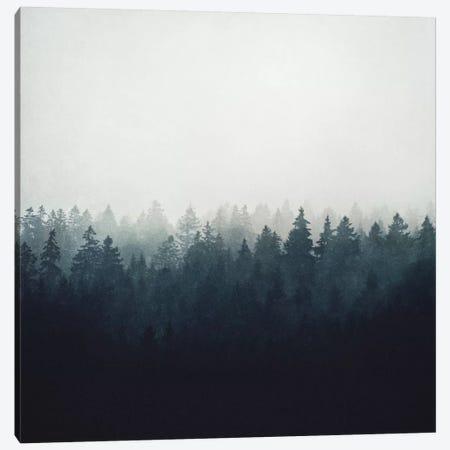 A Wilderness Somewhere Canvas Print #TDS1} by Tordis Kayma Art Print
