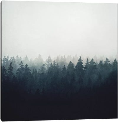 A Wilderness Somewhere Canvas Art Print