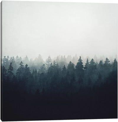 A Wilderness Somewhere Canvas Print #TDS1