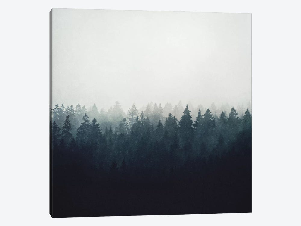 A Wilderness Somewhere by Tordis Kayma 1-piece Canvas Art