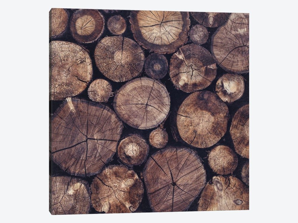 The Wood Holds Many Spirits by Tordis Kayma 1-piece Canvas Print