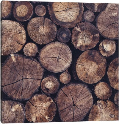 The Wood Holds Many Spirits Canvas Art Print