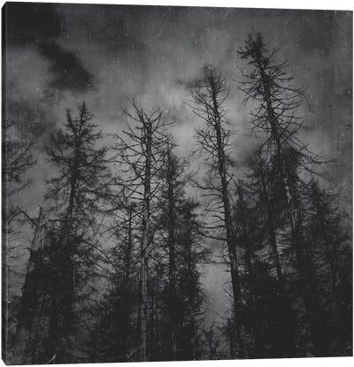 Transmission Canvas Art Print