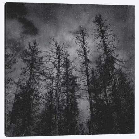 Transmission Canvas Print #TDS22} by Tordis Kayma Canvas Print