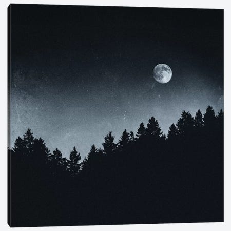 Under Moonlight Canvas Print #TDS23} by Tordis Kayma Canvas Print