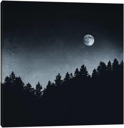 Under Moonlight Canvas Print #TDS23