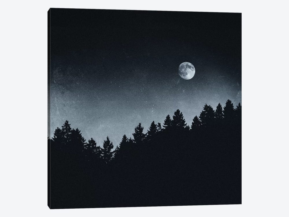 Under Moonlight by Tordis Kayma 1-piece Canvas Wall Art